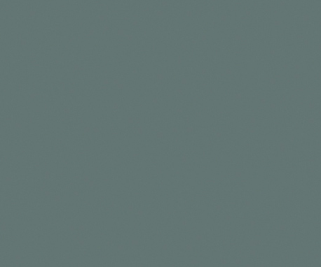 Moss-Gray_SG240_458