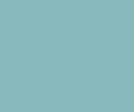 Surfin-USA_SV713_458