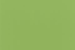 Limeade_SV7410_458
