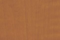 Caramel-Sagawood_WM8350_458