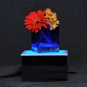 "LED Display Stand 8"" x 8"" x 5"""